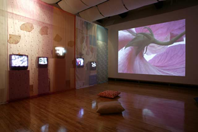 Installation view at MAM
